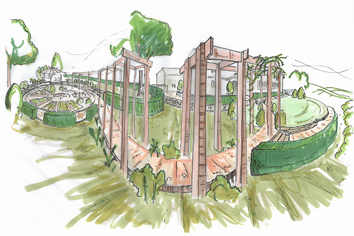 Proposed pergola path linking lawn area with circular vegetable plots.